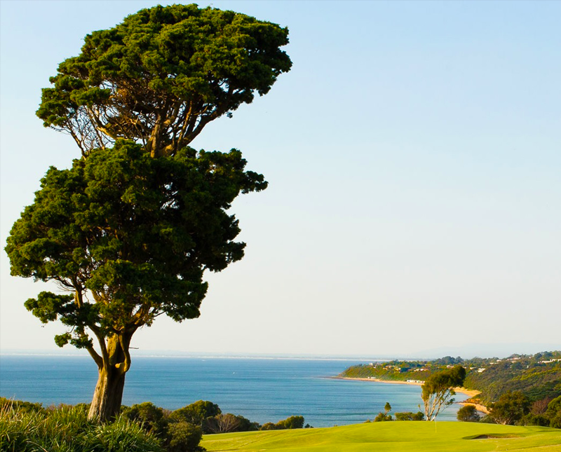 mornington-golf-club-deal